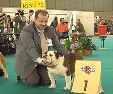 CH Captain Hudson With Mystyle crufts